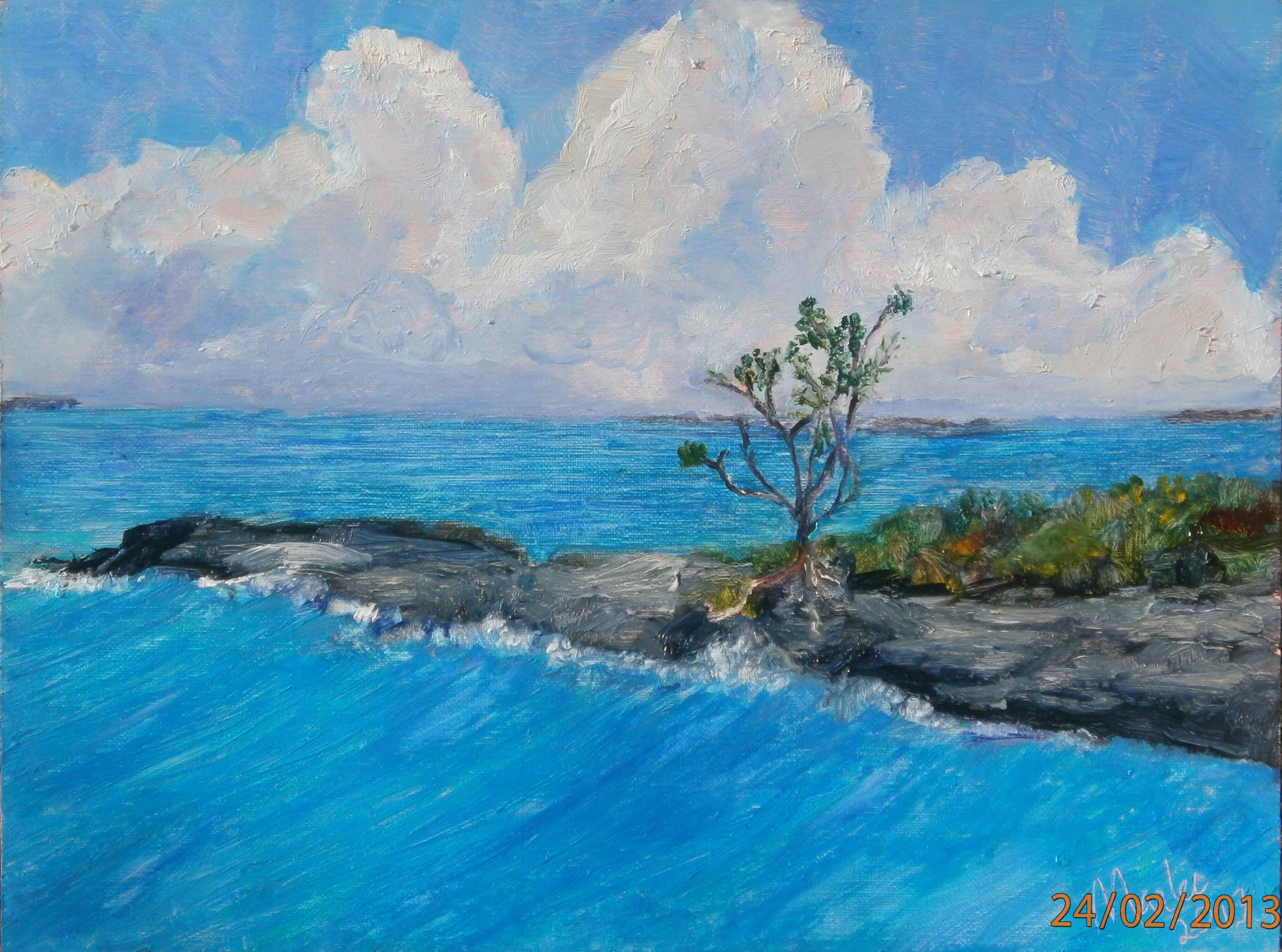 "Original Oil on wood backed canvas 9x12""    This very defiant buttonwood tree manages to survive the winds and sea surges on a rocky North Abaco Shore"